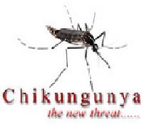 Chikungunya Virus Alert