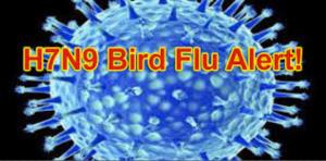 H7N9 Virus Alert