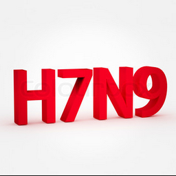 H7N9 Picture