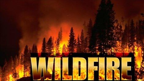 Wild Fire Alert