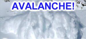 Avalanche Emergency Alert