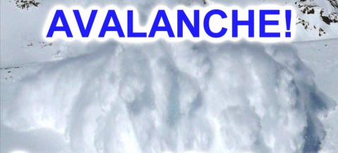 Avalanche Emergency Alert