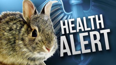 Rabbit Health Alert